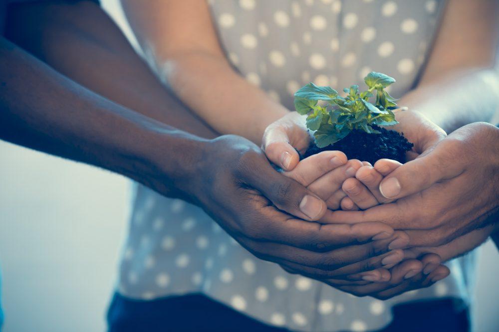 Teamwork - Social Care